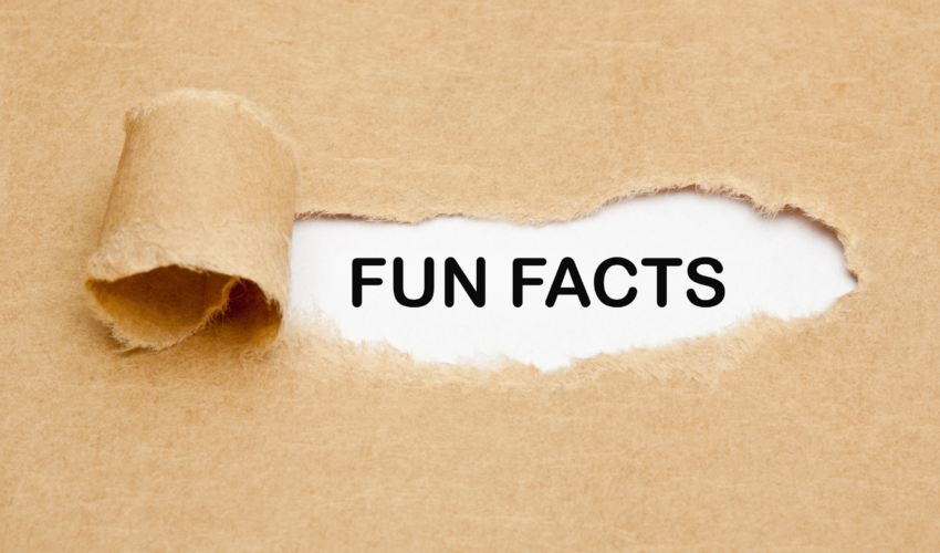 Fun Facts: Everything You Never Needed to Know about Commercial HVAC